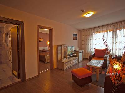 Apartment at SPA hotel Elbus, Velingrad - 2